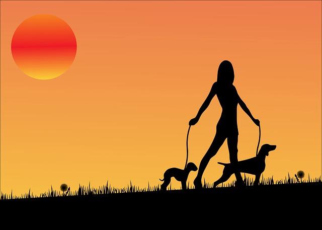sunset-163479_640